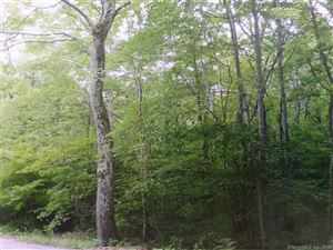 Photo of 0 Carter Road, Warren, CT 06754 (MLS # 170062597)