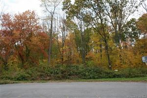 Photo of 51 Hill Farm Way #13, Barkhamsted, CT 06063 (MLS # 170048614)