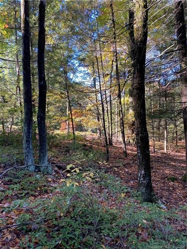 Photo of 199 Broad Hill Road, Granby, CT 06090 (MLS # 170347623)