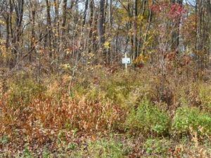 Photo of Lot 29 PEMBROKE HILL Road, Wolcott, CT 06716 (MLS # W10180633)