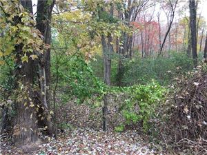 Photo of 22 Birch Mountain Road Extension, Bolton, CT 06043 (MLS # 170124647)