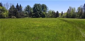 Photo of 80 Hoffman Road, Ellington, CT 06029 (MLS # 170210650)