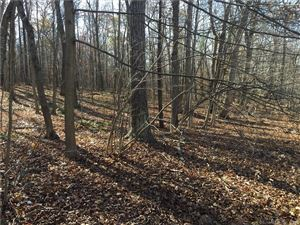 Photo of 0-A Tolland Turnpike, Willington, CT 06279 (MLS # 170032651)