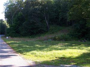 Photo of 45 Johnson Road, Litchfield, CT 06759 (MLS # 170066669)