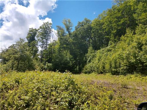 Photo of 287 Colebrook Road, Winchester, CT 06098 (MLS # 170307675)
