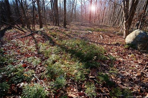 Photo of 48 Judd Hill Road #Lot 3A, Bethany, CT 06524 (MLS # 170373685)