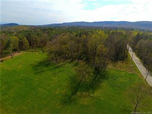 Photo of 388 Between The Lakes Road, Salisbury, CT 06068 (MLS # 170208695)
