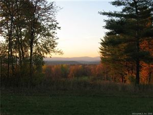 Tiny photo for 35 Under Mountain Road, Canaan, CT 06031 (MLS # 170052700)