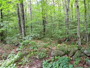 Photo of 0 Ashley Road, Winchester, CT 06098 (MLS # 170073702)