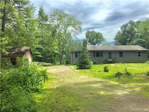 Photo of 18 Spruce Hill Road, Weston, CT 06883 (MLS # 170053711)