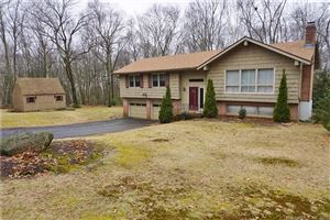 Photo of 14 Dean Drive, Bolton, CT 06043 (MLS # 170053714)