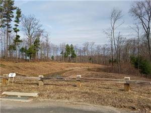 Photo of 17 Grassy Hill Road, Ellington, CT 06029 (MLS # 170099715)