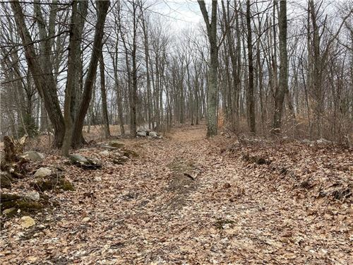 Photo of LOT 4 Shoddy Mill Road, Andover, CT 06232 (MLS # 170272716)