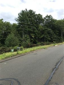 Tiny photo for 11 Kelsey Court, Barkhamsted, CT 06063 (MLS # 170119719)