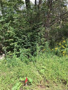 Photo of 6 Davis Road, Harwinton, CT 06791 (MLS # 170232721)