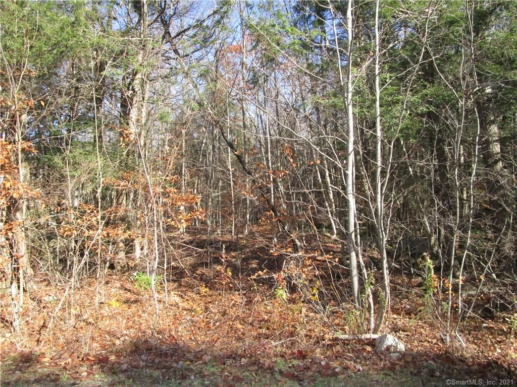 Photo of 111 Highview Drive, Winchester, CT 06098 (MLS # 170388721)