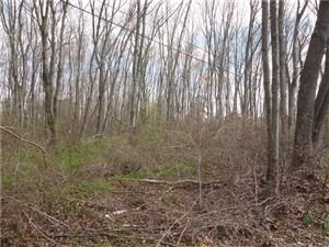 Photo of Lot 1 Westchester Road, Colchester, CT 06415 (MLS # G10130733)