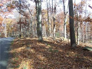Photo of 2 Wormwood Hill Road, Mansfield, CT 06250 (MLS # 170218736)