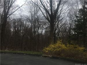 Photo of 15 Homestead Lane, Canton, CT 06019 (MLS # 170077737)