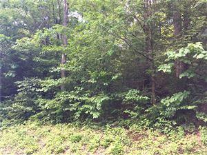 Photo of 86 Cotton Hill Road, New Hartford, CT 06057 (MLS # L10232741)