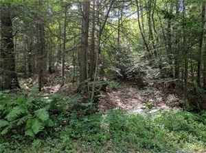 Photo of 71 Shadybrook Road, New Hartford, CT 06057 (MLS # 170001744)