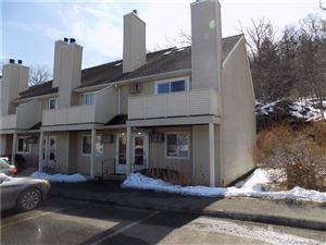 Photo of 112 Willow Springs #112, New Milford, CT 06776 (MLS # 170172744)