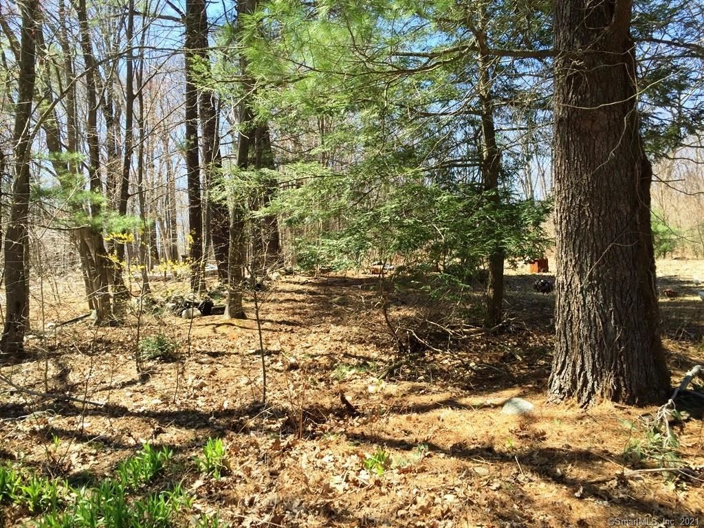 Photo of 159 Campville Road, Litchfield, CT 06778 (MLS # 170428746)