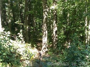 Photo of 685C Brushy Hill Road, Woodbury, CT 06798 (MLS # 170123761)