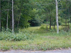 Photo of 28 Homestead Road, Ledyard, CT 06339 (MLS # 170185768)