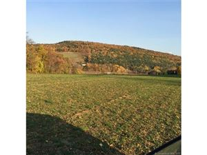Photo of 132 Taylor Road, Millerton, NY 12546 (MLS # L10198772)