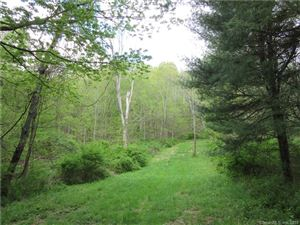 Photo of 4993 Route 22 #LOT 1, Amenia, NY 12501 (MLS # 170048784)