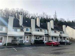 Photo of 112 Willow Springs #112, New Milford, CT 06776 (MLS # 170154803)