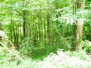 Photo of 29 Old New Hartford Road, Barkhamsted, CT 06063 (MLS # 170003805)