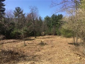 Photo of 00 Route 197, Woodstock, CT 06281 (MLS # 170074821)