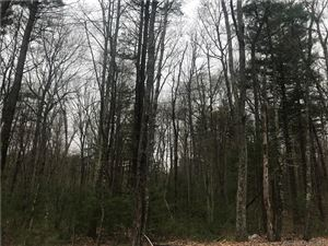 Photo of 189 Coomer Hill Road, Killingly, CT 06241 (MLS # 170190823)