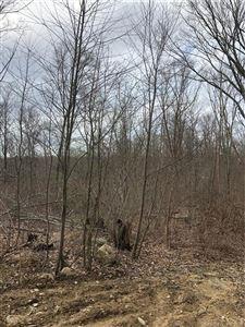 Photo of 24 Wells Wood Road, Columbia, CT 06237 (MLS # 170184826)