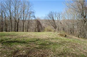 Photo of 0 West Dover Road, Dover, NY 12522 (MLS # 99173836)