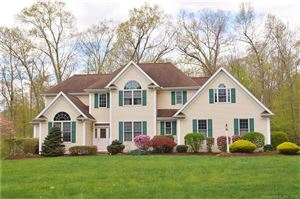 Photo of 28 Stag Trail, Tolland, CT 06084 (MLS # 170056841)