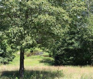 Photo of 682 East Pond Meadow Road, Westbrook, CT 06498 (MLS # 170024847)