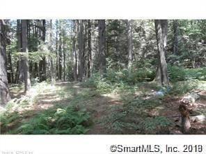 Photo of 596 Wildcat Hill Road, Harwinton, CT 06791 (MLS # 170232853)