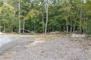 Photo of 87 Route 81, Killingworth, CT 06419 (MLS # 170137854)