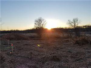 Photo of 47 WINDERMERE VILLAGE Road, Ellington, CT 06029 (MLS # 170025858)