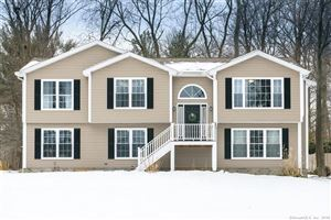 Photo of 521 Curtiss Street, Southington, CT 06489 (MLS # 170053858)