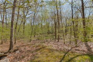 Photo of 33 Old Country Road, Oxford, CT 06478 (MLS # 170144864)