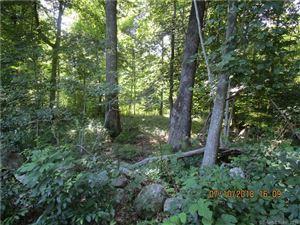 Photo of 169 Scott Hill Road, Salem, CT 06420 (MLS # 170059868)