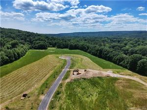 Photo of 6 Strong Field Road, Woodbury, CT 06798 (MLS # 170234869)