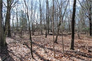 Photo of Lot 2 Deep River Road, Colchester, CT 06415 (MLS # 170183875)