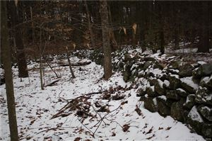 Photo of 0 Old Forge Road, Hartland, CT 06027 (MLS # 170195881)