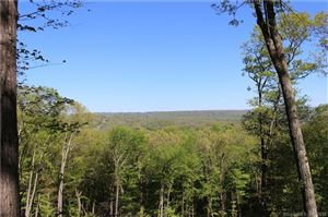 Photo of 146 Long Mountain Road, New Milford, CT 06776 (MLS # 170114883)
