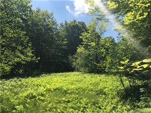 Photo of 00 Loon Meadow Drive, Norfolk, CT 06058 (MLS # L10235884)